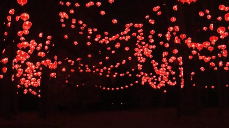 Fête lumières 2013 Lampions rouges