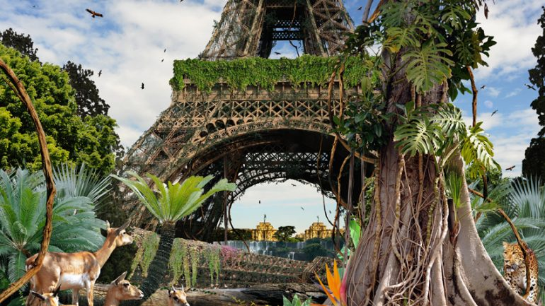 paris-jungle2