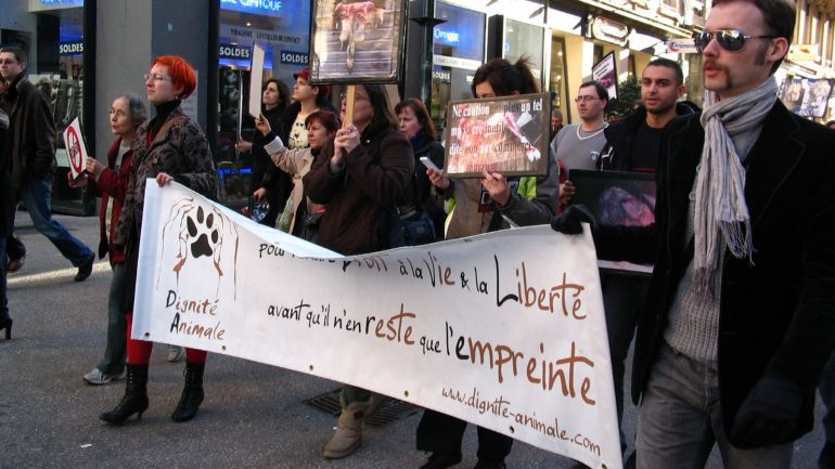 Manifestation Fourrure animale