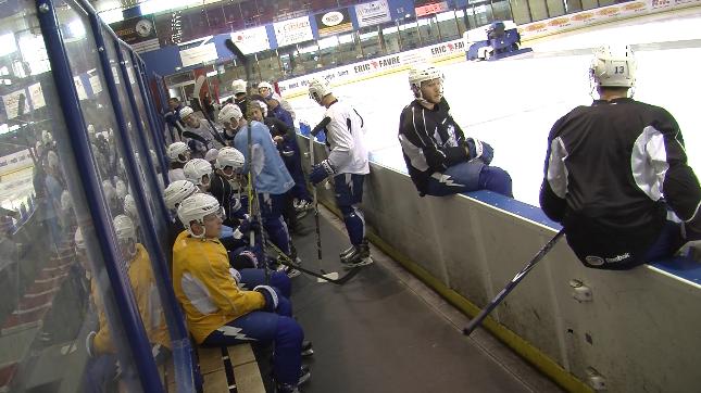 Hockey LHC