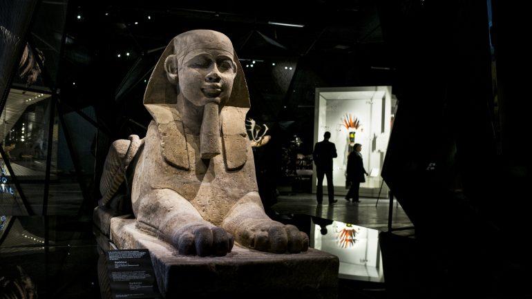 Musée des confluences Sphinx