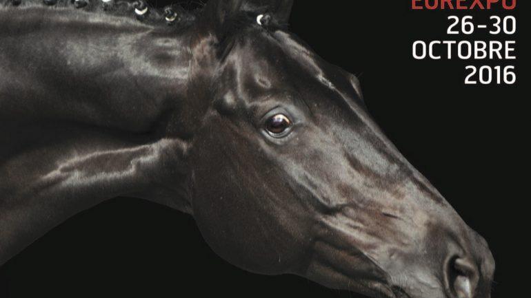Equita 2016 détail affiche