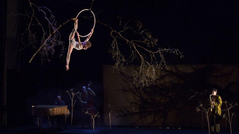 Cirque Plume Dernière Saison 1