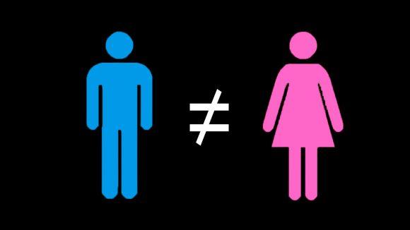 Inégalités hommes/femmes
