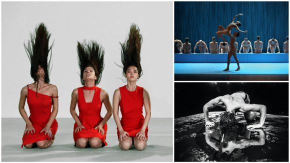 Carmen, de José Montalvo / Noé, de Thierry Malandain / Le Bestiaire d'Hichem, de Jeanne Mordoj © Patrick Berger / Olivier Houeix / Géraldine Aresteanu (montage LC)