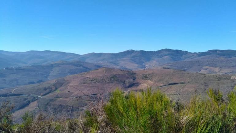 Calendrier Trail Auvergne.Ultra Beaujolais Villages Trail Vers Une Edition Fraiche