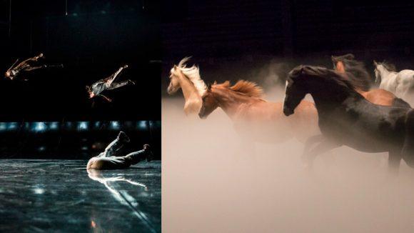Images du Requiem de Yoann Bourgeois et du nouveau spectacle de Zingaro, Ex Anima © Géraldine Aresteanu / Marion Tubiana (montage LC)