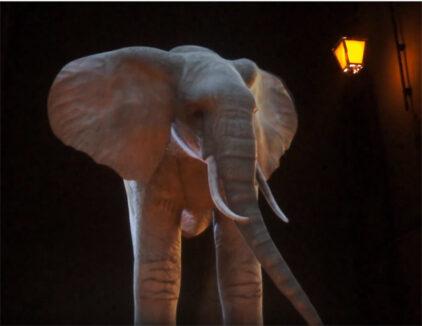 Hologramme d'éléphant – FDL 2011 © DR