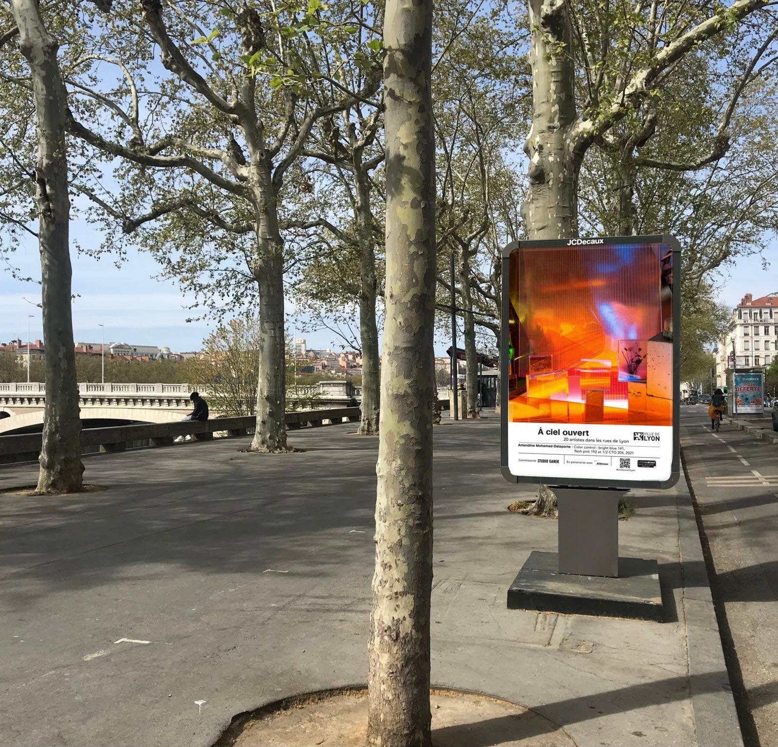 La mairie de Lyon soutien 20 artistes lyonnais à travers cette exposition
