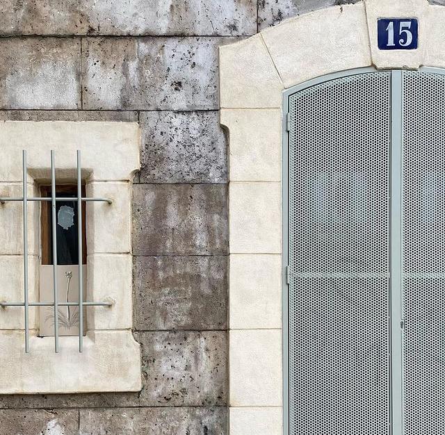 Autruche dans Paris - Artiste lyonnais Ayiro